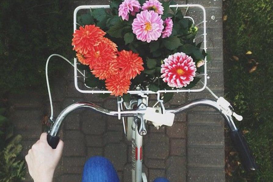 Vá de bicicleta!