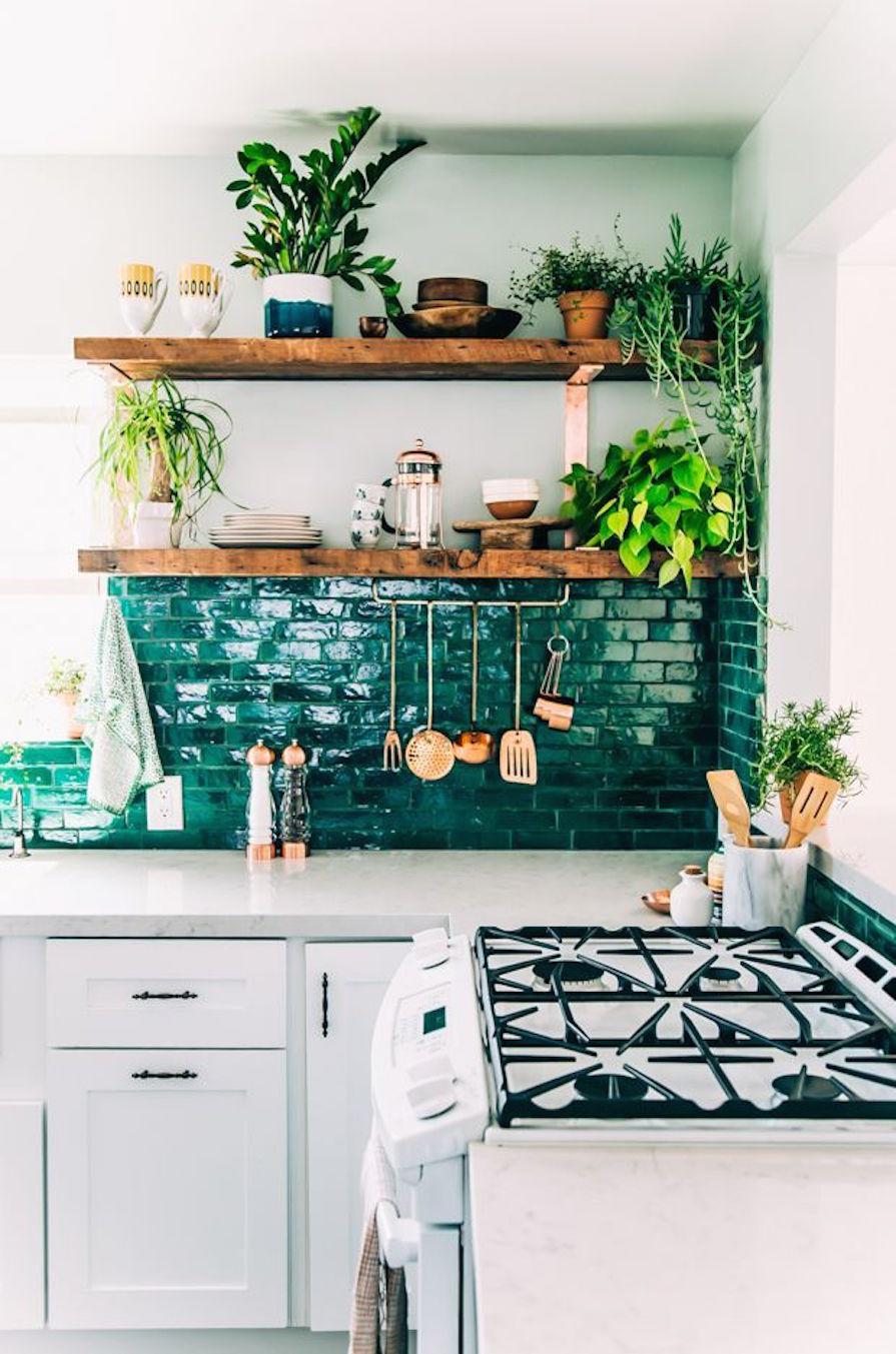 mais-verde-dentro-de-casa-plantas-decoracao-danielle-noce-1
