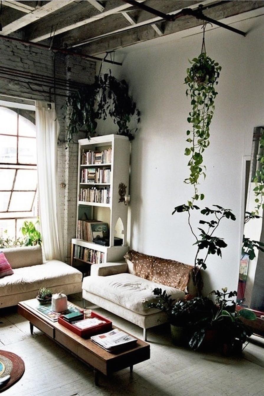 mais-verde-dentro-de-casa-plantas-decoracao-danielle-noce-4