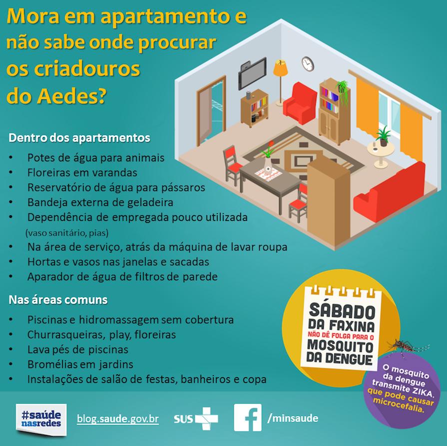 Criadouros-aedes-dengue-zika-chikunguya-prevencao-casa-apartamento-piscina-danielle-noce-1