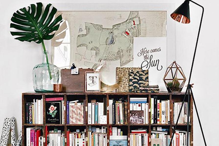 Paixão por livros