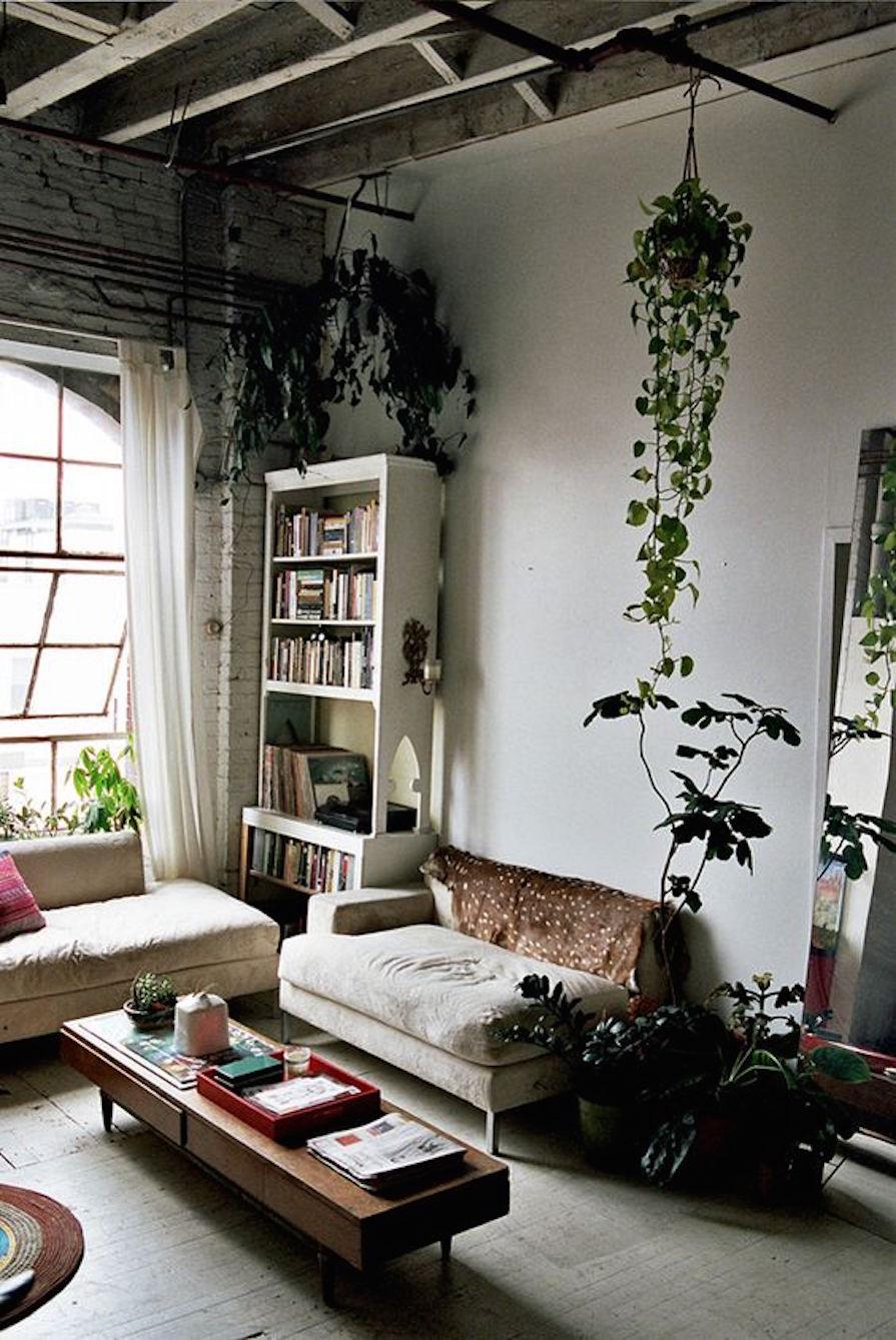 salas-com-vida-verde-decoracao-danielle-noce-0