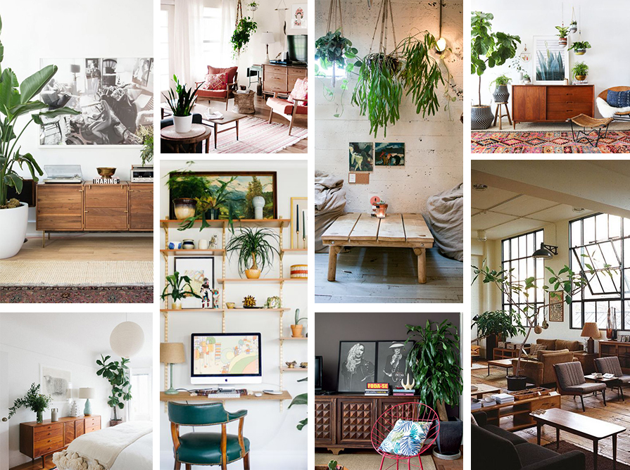 plantas-na-decoracao-interna-externa-danielle-noce-2