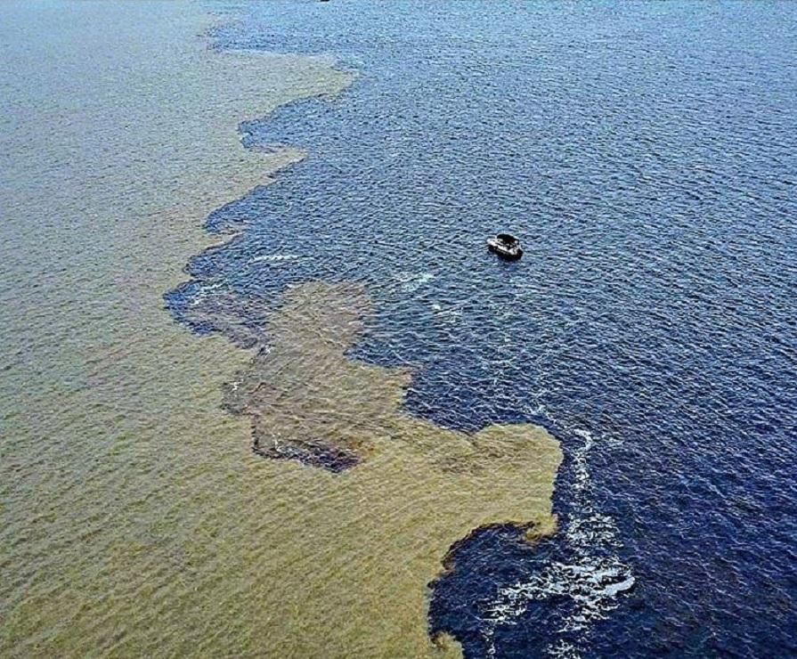 mergulho-no-encontro-das-aguas-amazonia-vlog-de-viagem-2-danielle-noce