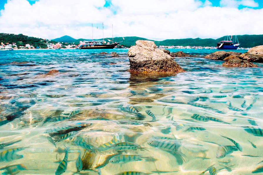itoral-catarinense-5-lugares-incriveis-para-viajar-no-verao-danielle-noce-imagem-destaque