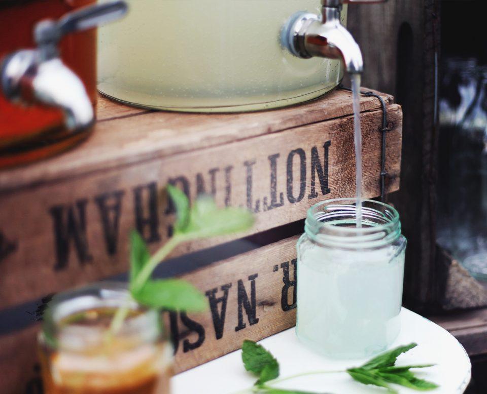 Suqueiras: o item perfeito para o verão