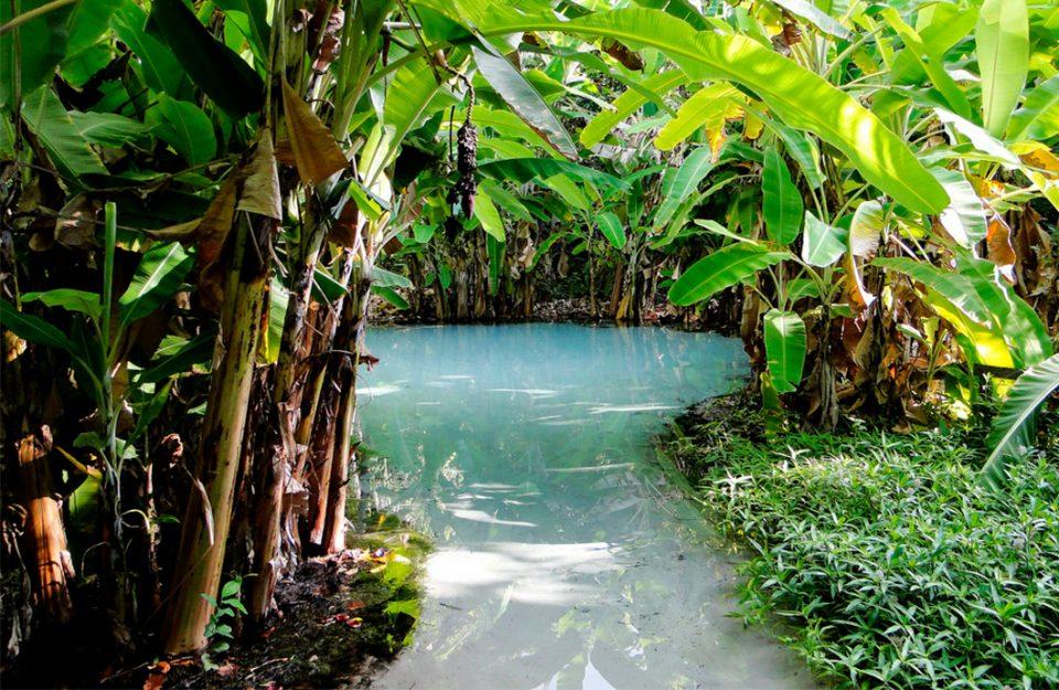 Para Quem Ama Natureza: Parque Estadual do Jalapão