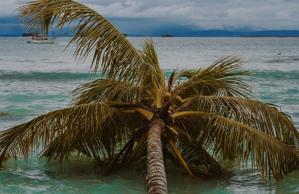 Chicheme: a ilha mais agitada de San Blas | Kuna Yala
