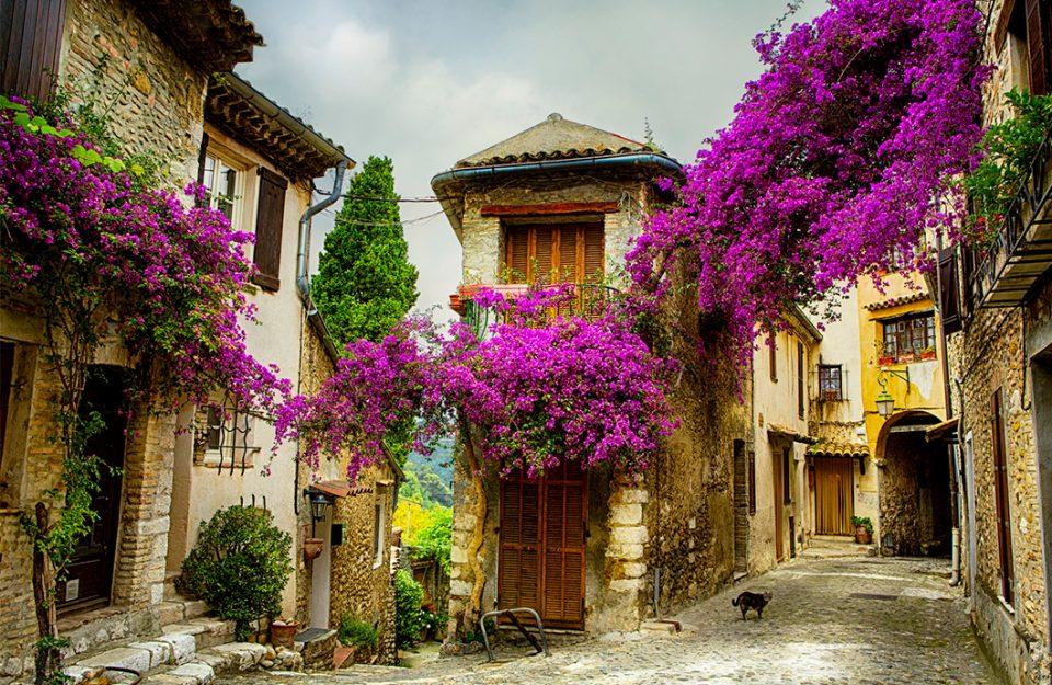 O que você precisa saber antes de ir a Provence, na França