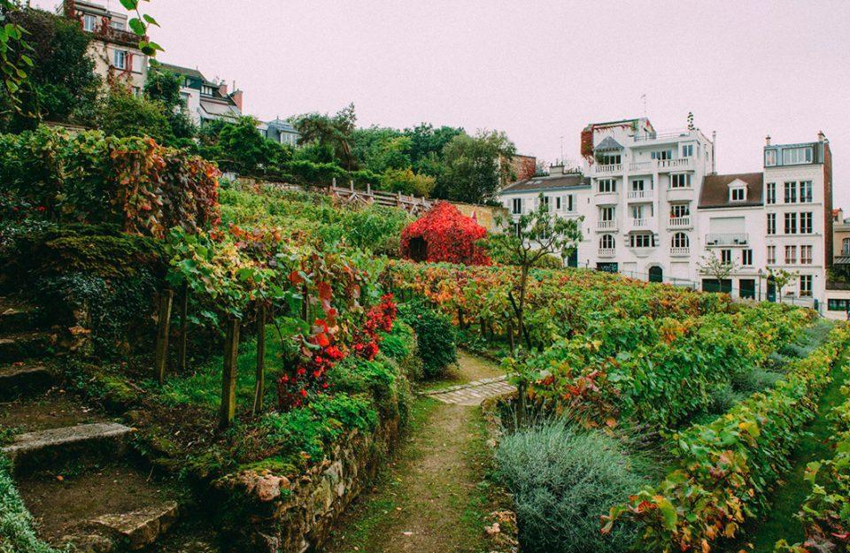 7 Lugares de Montmartre que você precisa conhecer