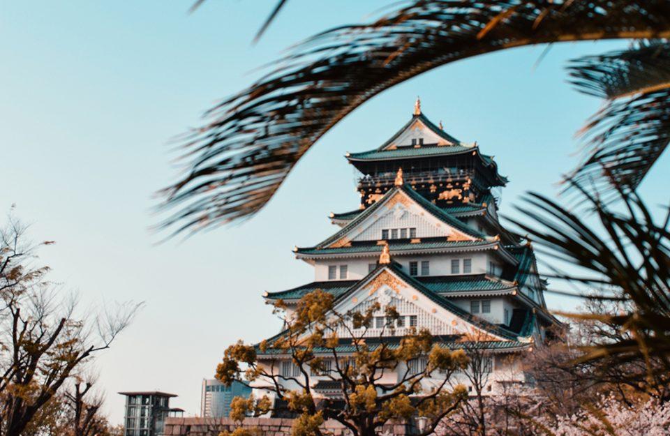 o-que-voce-precisa-saber-antes-de-ir-ao-japao-dani-noce-destaque