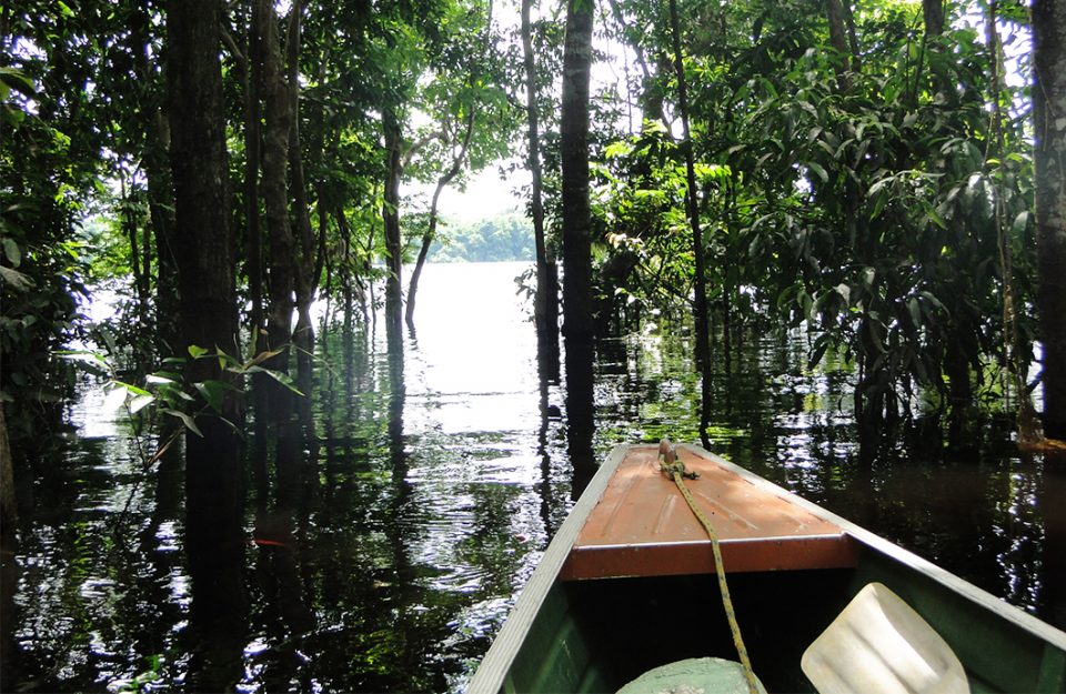 Amazonas Além de Manaus!