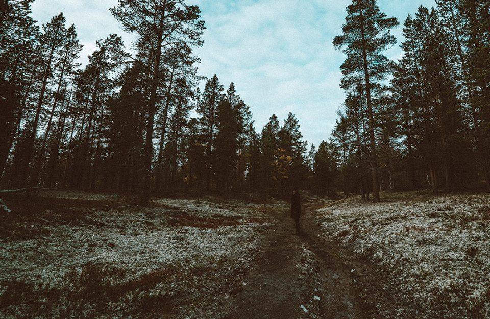 Floresta Encantada na Noruega | Røros