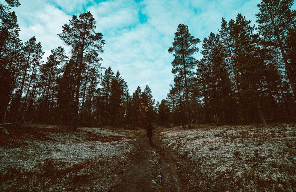 meu-roteiro-noruega-roros-oslo-6-dias-dani-noce-destaque