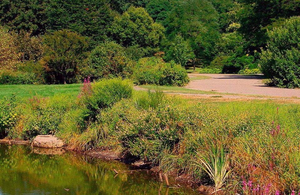 Os 8 Melhores Parques e Jardins de Boston