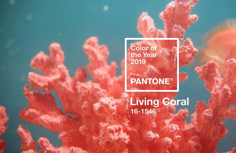 Living Coral: A Cor De 2019!