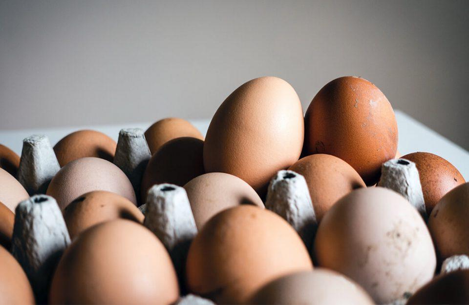 Como saber se um ovo está estragado?