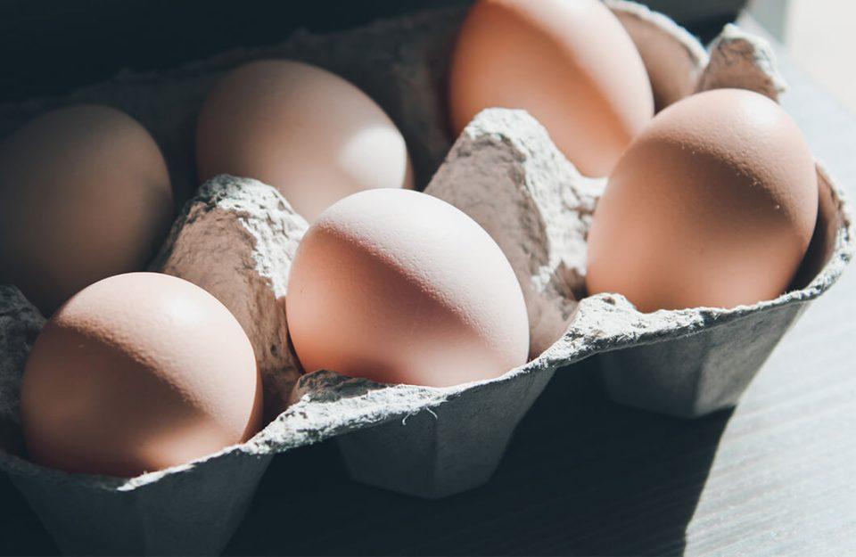 Qual A Melhor Forma De Conservar Ovos?