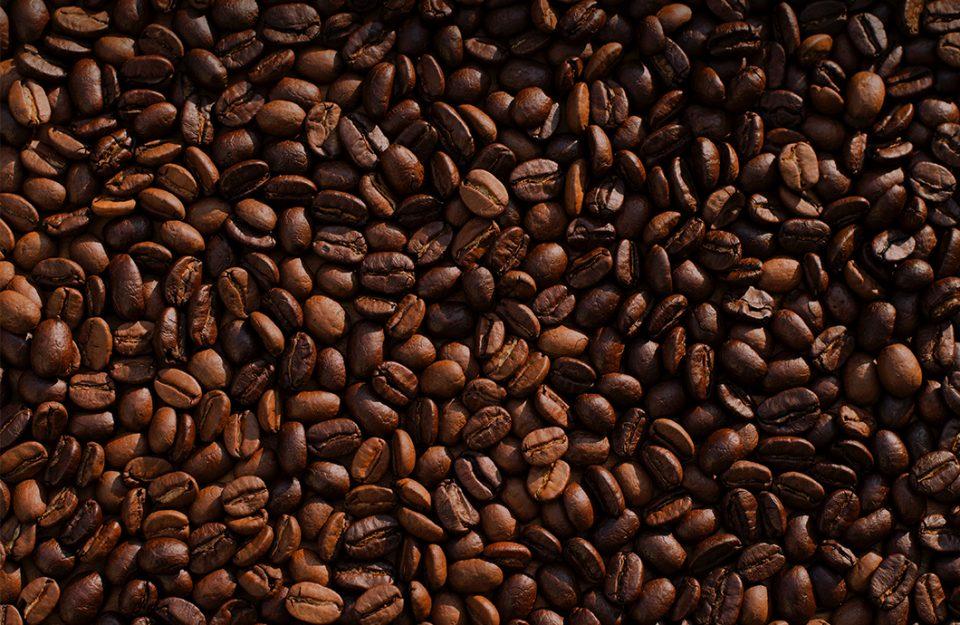 Kopi Luwak: O Café Mais Caro do Mundo