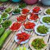 Tipos de pimenta: escala de ardência e como utilizar cada uma