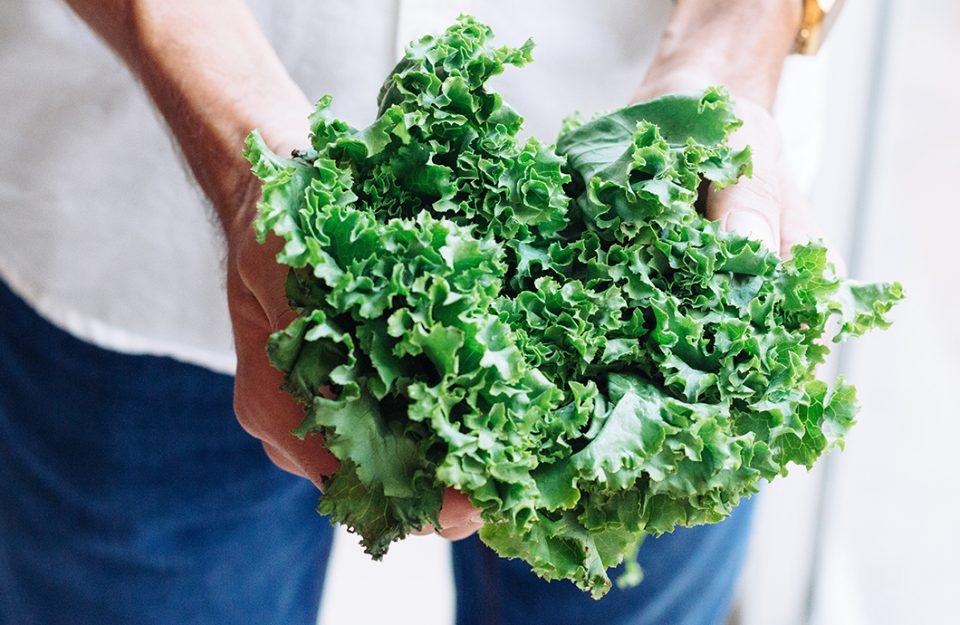 5 Verduras que duram mais na geladeira e seus benefícios