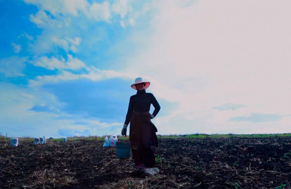 O Mercador (Sovdagari): o que realmente é essencial para nós?