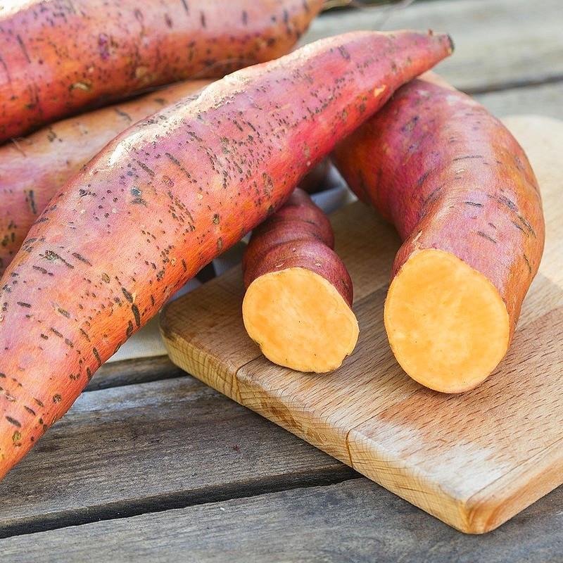 Tipos de batata: quais são e como utilizar cada uma delas nas receitas