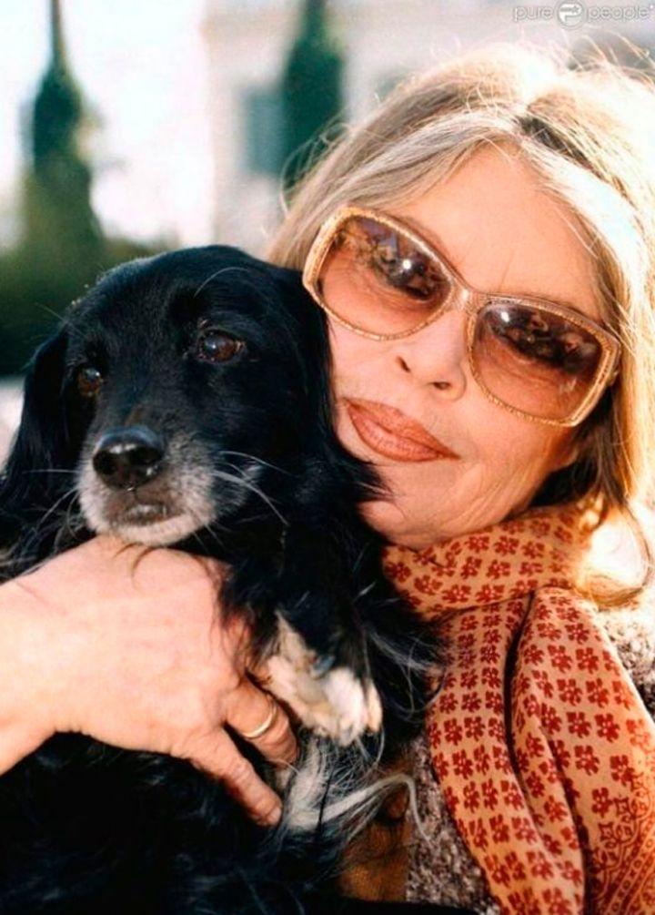 Brigitte Bardot: sexy e confortável ao mesmo tempo é possível e inspirador