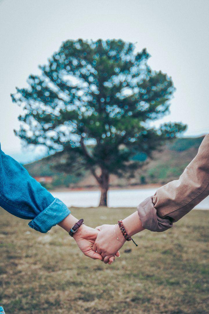 Comunicação Não-Violenta: como dizer o que é preciso sem machucar