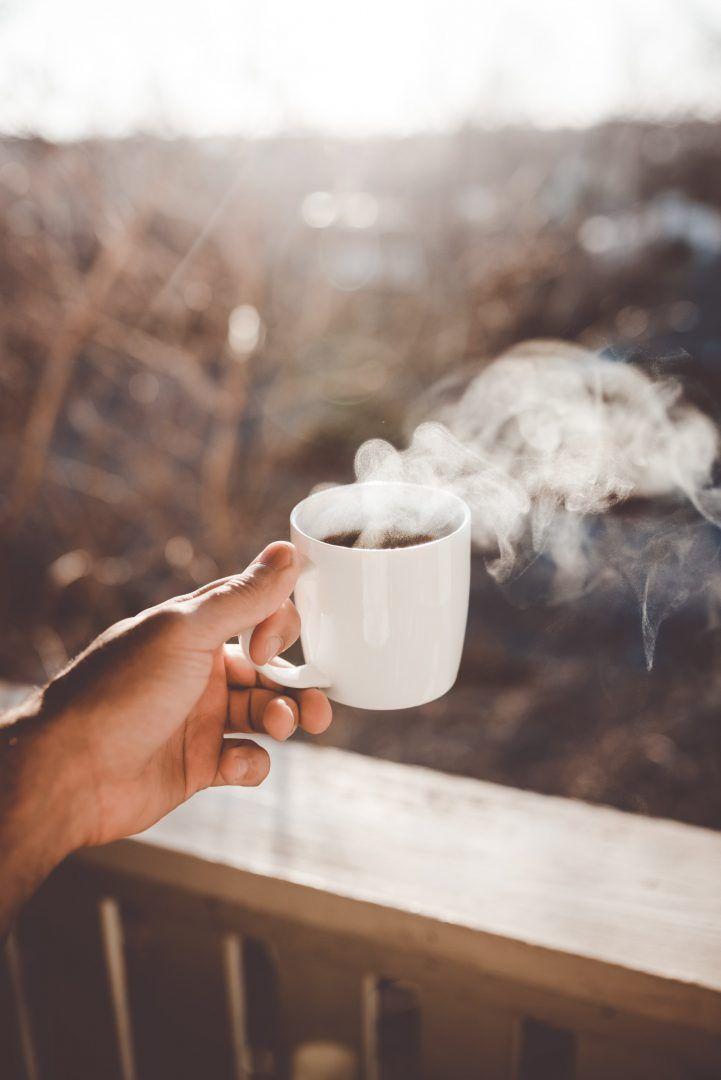Conheça as profissões do ramo dos chás: de sommelier a tea master