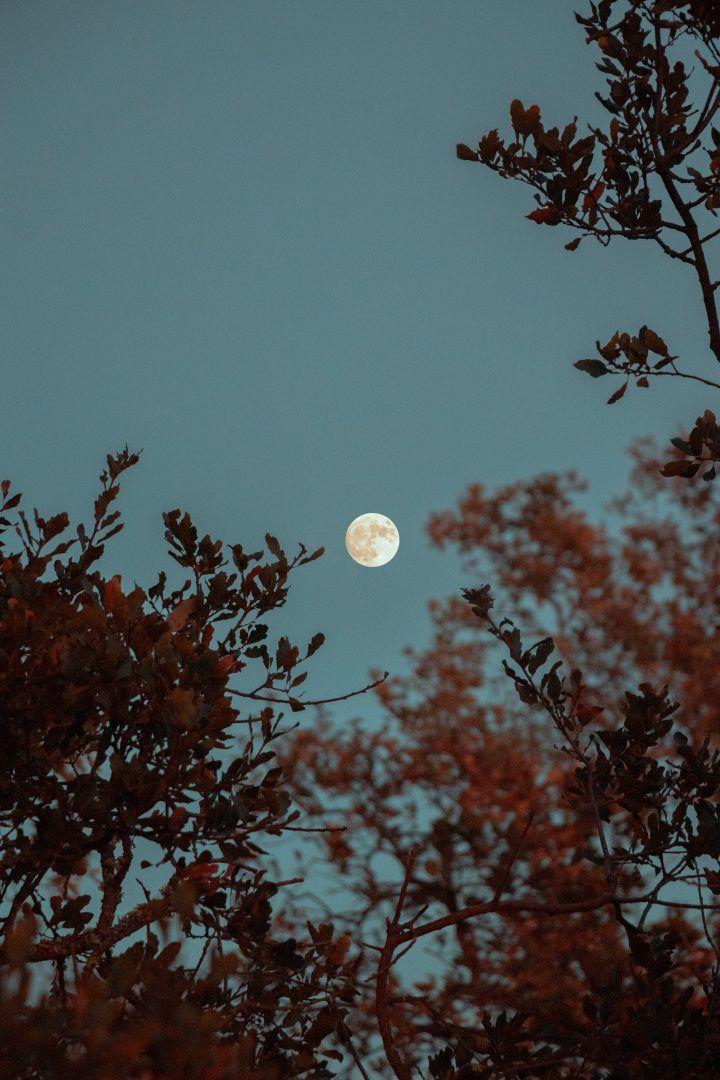Sol e lua: os olhos do céu na Astrologia