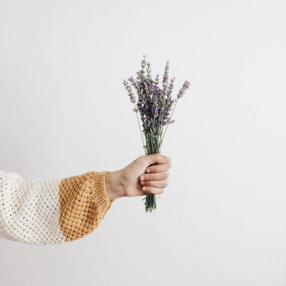 Óleos essenciais: os 3 melhores pra quem está começando